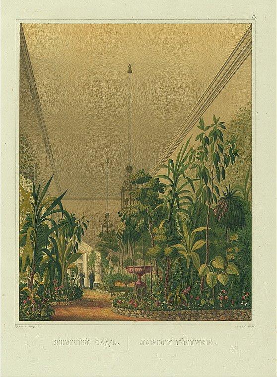 Зимний сад в Малом Эрмитаже в 40-е – 50-е годы XIX века