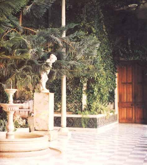 Зимний сад Алупкинского дворца 2