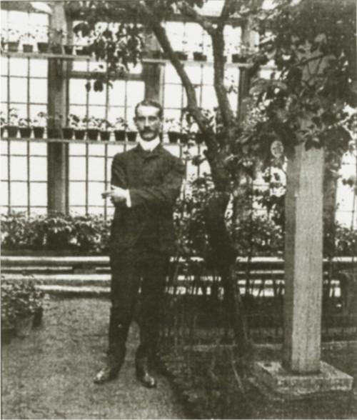 Зимний сад Г. А. Боссе
