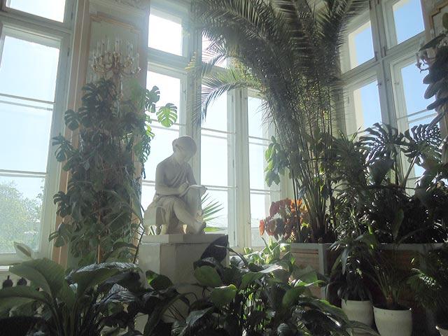 Зимний сад Аничкова дворца 2