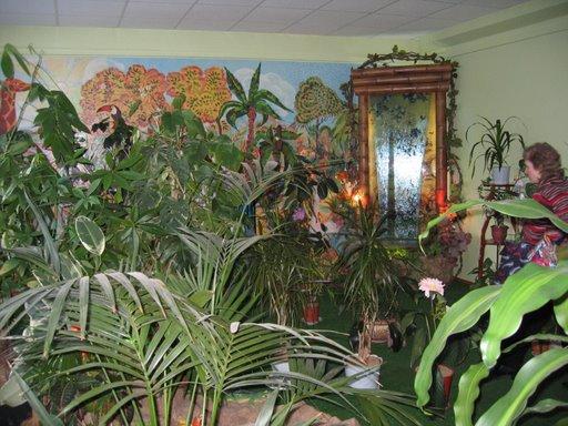 Зимний сад на последнем этаже дома