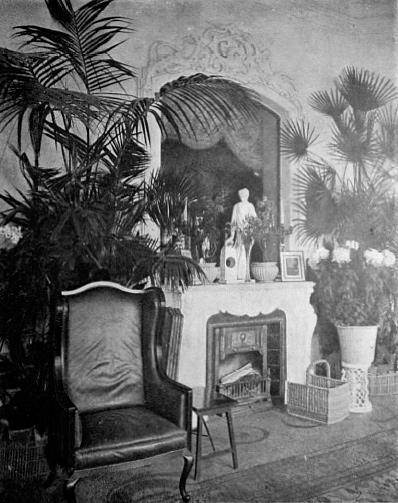 Зимний сад Таврического дворца 2
