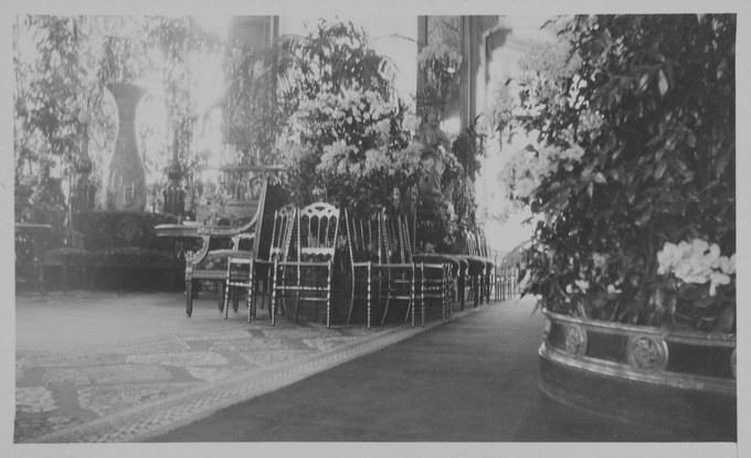 Зимний сад Зимнего дворца
