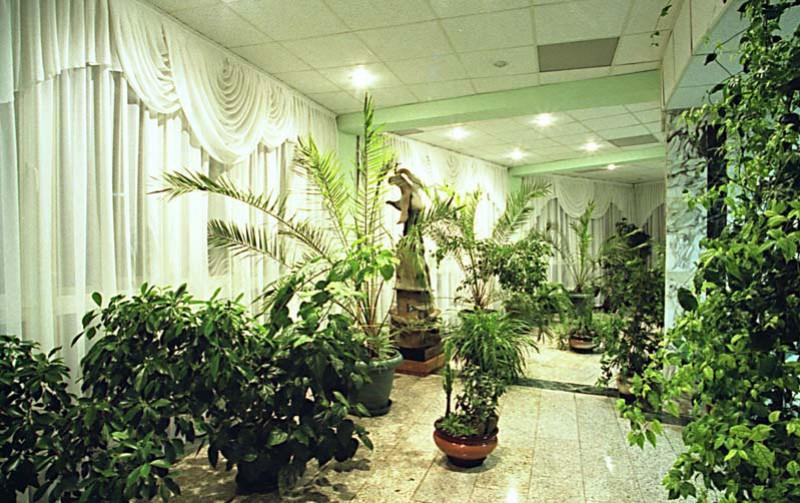 Зимний сад императрицы Александры Федоровны