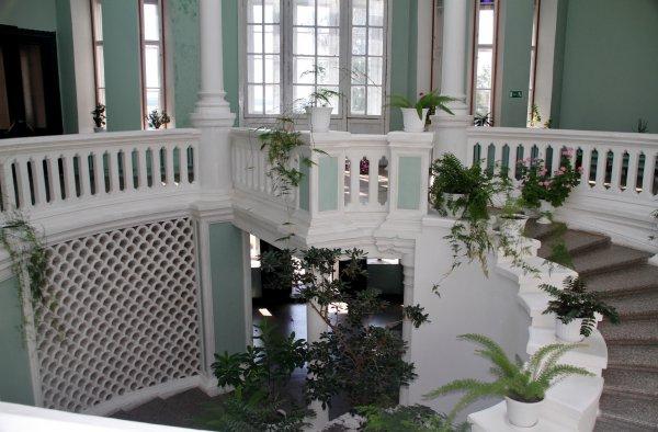 Балкон в Зимнем саду