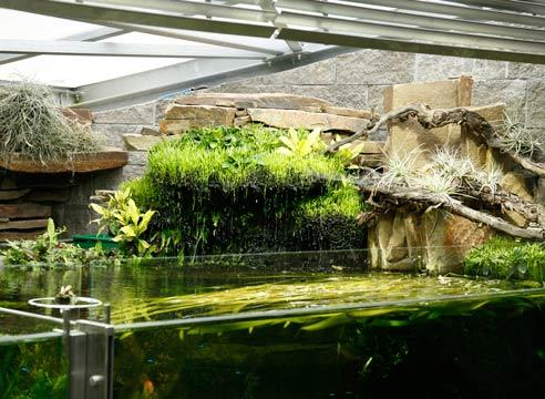 Аквариум в Зимнем саду