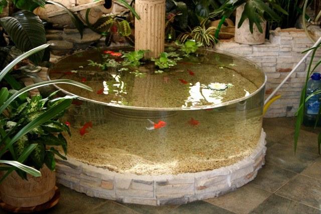 Зимний сад с аквариумом