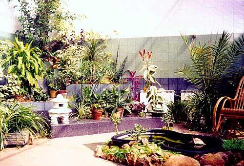 Зимний сад прошлого века