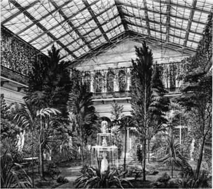Акварель Э. П. Гау - Зимний сад в Эрмитажном павильоне