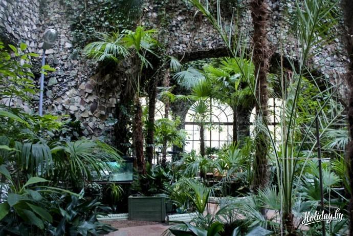 Зимний сад Юсуповского дворца 2