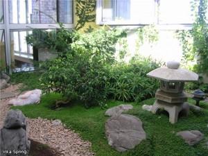 Зимний сад 2