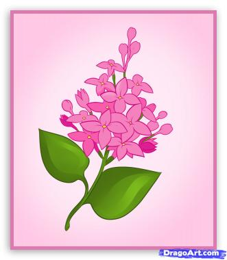 Рисунок российской флоры