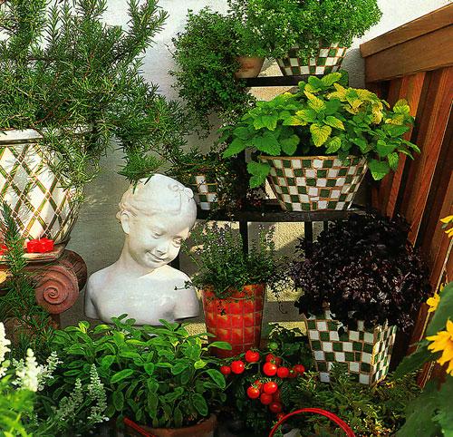 Растения в доме 2