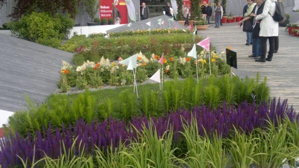 Выставка растений