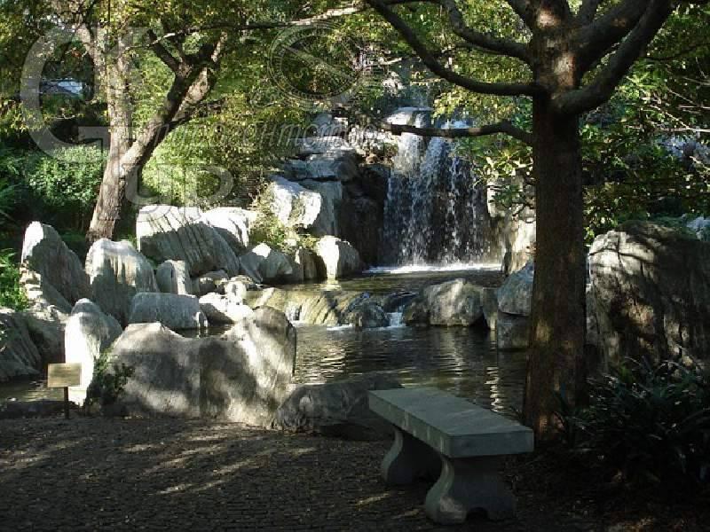 Водоем в китайском саду