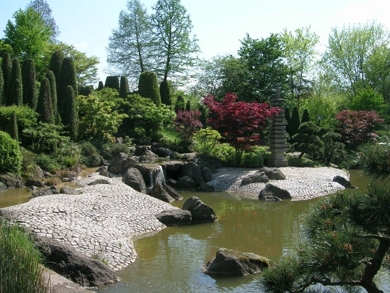 Пруд в Тайваньском саду