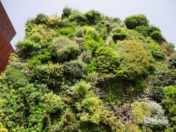 Искусственная скала с зелеными насаждениями
