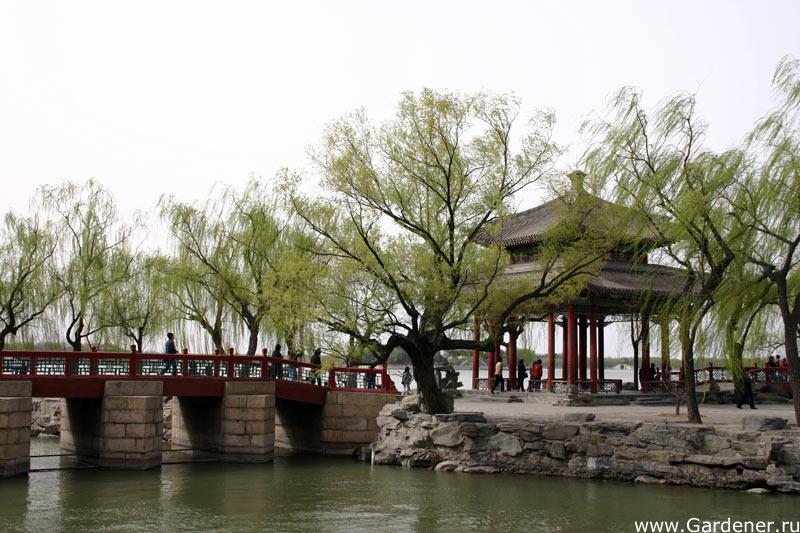 Водный пейзаж парка Лююань