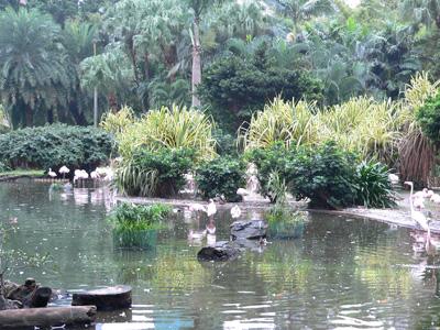 Парк Цзисяошаньчжуан
