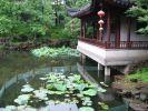 Традиционный китайский cад 2