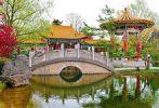 Пруд в китайском саду 2