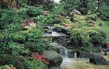 Китайский личный сад 3