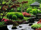 Китайский личный сад 2