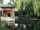 Китайский личный сад 4