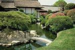 Китайский сад 4