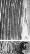 Тяговая древесина