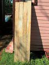 Плесень на древесине 1