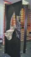 Металлическая дверь 2